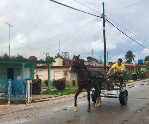 A brown horse pulls a man on a cart. Teal and pink buildings are in the background.