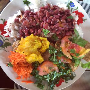 A plate full of rice, beans, pork, and salad